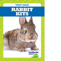 Cover: Rabbit Kits