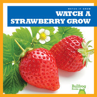 Cover: Watch a Strawberry Grow