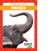 Cover: Noses