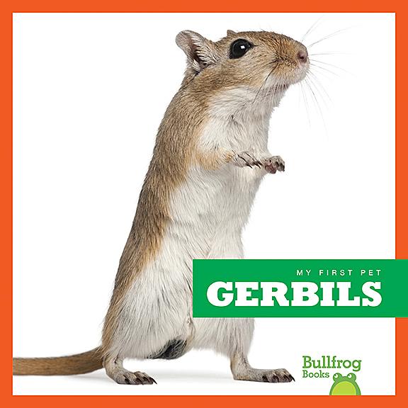Gerbils Jump Inc