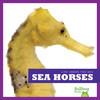 Cover: Sea Horses