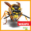 Cover: Wasps