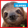 Cover: Sloths