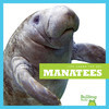 Cover: Manatees