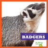 Cover: Badgers