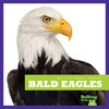 Cover: Bald Eagles