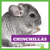 Cover: Chinchillas