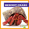 Cover: Hermit Crabs
