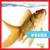 Cover: Peces (Fish)