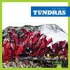 Cover: Tundras