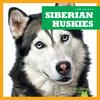 Cover: Siberian Huskies