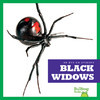 Cover: Black Widows