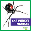 Cover: Las viudas negras (Black Widows)