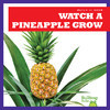 Cover: Watch a Pineapple Grow