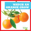Cover: Watch an Orange Grow