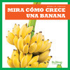 Cover: Mira cómo crece una banana (Watch a Banana Grow)