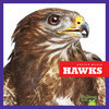Cover: Hawks