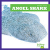 Cover: Angel Shark