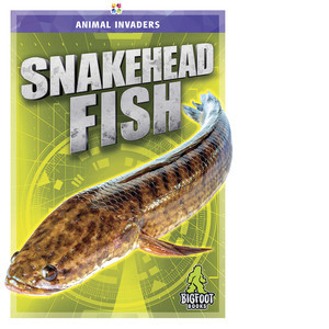 Cover: Snakehead Fish