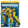 Cover: Transformers