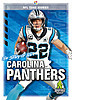 Cover: The Story of the Carolina Panthers