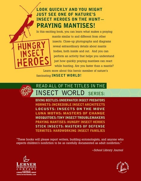 Praying Mantises: Hungry Insect Heroes - Lerner Publishing ...