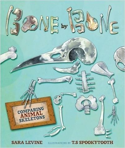 Cover: Bone by Bone: Comparing Animal Skeletons
