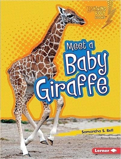 Cover: Meet a Baby Giraffe