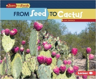 Cover: From Seed to Cactus