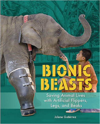 Cover: Bionic Beasts: Saving Animal Lives with Artificial Flippers, Legs, and Beaks