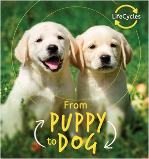 Cover: From Puppy to Dog