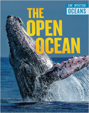 Cover: The Open Ocean