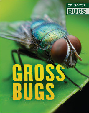 Cover: In Focus: Bugs — Library Bound Set