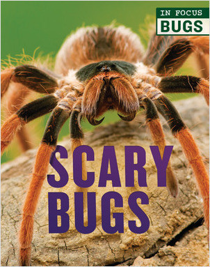 Cover: Scary Bugs