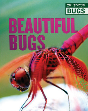 Cover: Beautiful Bugs