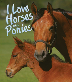Cover: I Love Horses and Ponies