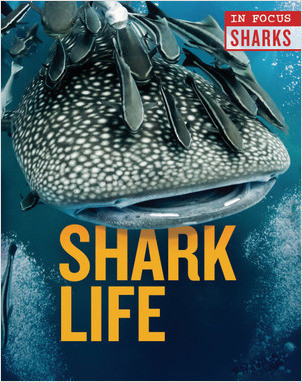 Cover: Shark Life
