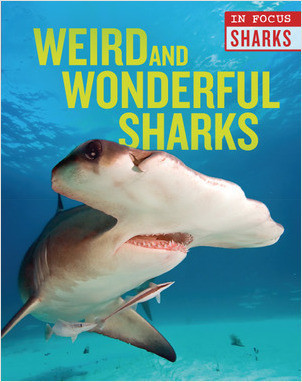 Cover: Weird and Wonderful Sharks