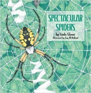 Cover: Spectacular Spiders