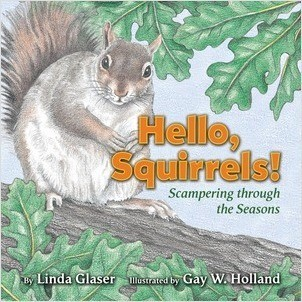 Cover: Hello, Squirrels!: Scampering through the Seasons