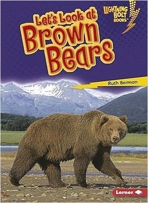 Cover: Let's Look at Brown Bears