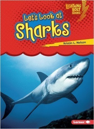 Cover: Let's Look at Sharks