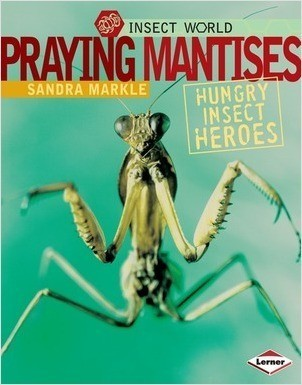 Cover: Praying Mantises: Hungry Insect Heroes