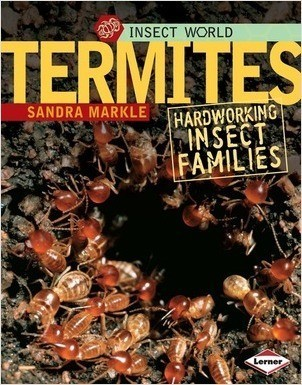 Cover: Termites: Hardworking Insect Families