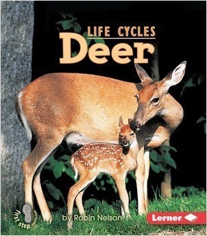 Cover: First Step Nonfiction — Animal Life Cycles — eBook Set