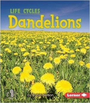 Cover: Dandelions