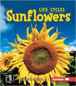 Cover: Sunflowers