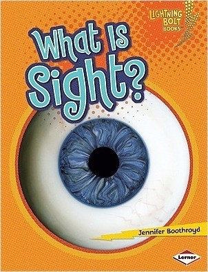 Cover: What Is Sight?