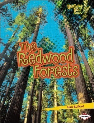 Cover: The Redwood Forests