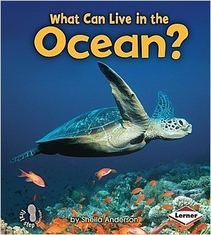 Cover: What Can Live in the Ocean?
